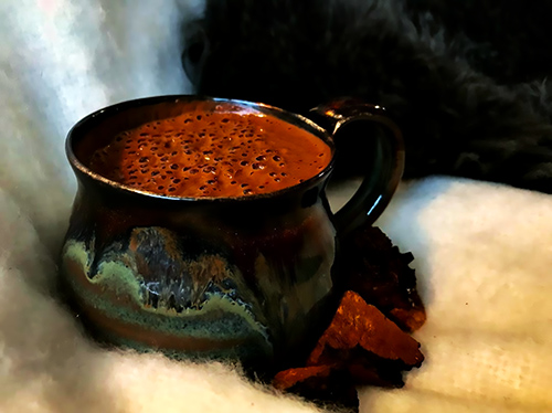 image of a mug of frothy chaga hot chocolate